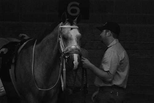 Retama Park Horse Racing