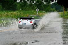 Flooding DSC_1928