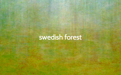 The color of... a Swedish forest