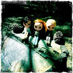 Tahoe trio