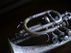 "trumpet • <a style=""font-size:0.8em;"" href=""http://www.flickr.com/photos/44919156@N00/5965991507/"" target=""_blank"">View on Flickr</a>"