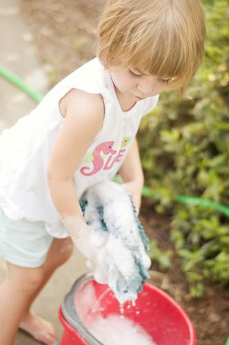 garden.john murray.car washing.pickles._0034
