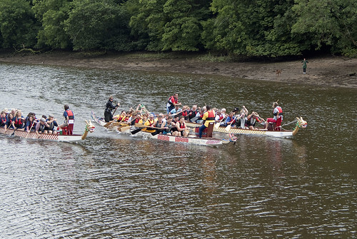 Totnes Dragon Boat Festival by BeccaG
