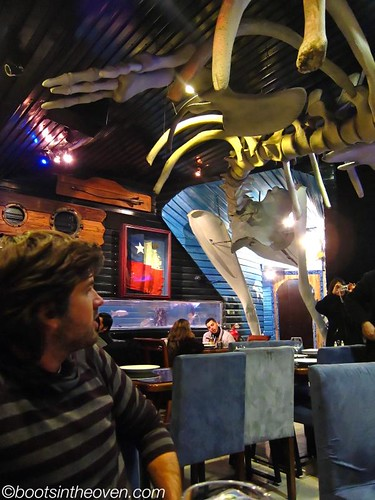 Logan overwhelmed by the crazy whale skeleton at Ocean's Pacific
