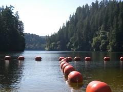 Loon Lake OR (LarrynJill) Tags: summer orange lake water oregon loonlake buoys picnik 2011