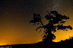 Silueta (Carlos J. Teruel) Tags: nikon murcia cielo estrellas nocturnas caravaca 2011 vialactea tokina1116 xaviersam losroyos carlosjteruel