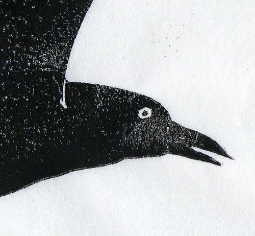 Crow detail