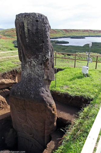Archaeological work allowed us to see an excavated moai in its pit