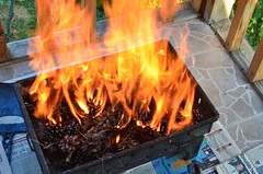 Are you ready to enjoy a barbecue? (Nikonhist) Tags: light summer house color colour colors closeup turkey nikon asia colours close trkiye july 1855mm nikkor dslr ankara 2011 kzlcahamam 1855vr d5100 nikond5100 nikonhist