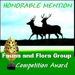 fauna competition