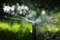 (Greg Lilly Photos) Tags: sprinkler 75300 sonya550