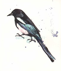 bird Magpie May COPYRIGHT (Eastwitching) Tags: bird nature handmade etsy welshartist birdart britishartist ukartist alisonfennell eastwitching birdmagpieblackandwhitewatercolors birdwatercolours