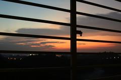 Cage (MahanMD) Tags: sunset red sky orange sun black clouds fire sadness infinity empty cage burning malaysia kualalumpur slave غروب آسمان قفس canon400d دلتنگی اسارت