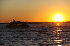 Water Taxi at Sunset from Red Hook, Brooklyn (ChrisGoldNY) Tags: nyc newyorkcity sunset orange usa newyork water brooklyn america boats forsale posters gothamist redhook bookcovers watertaxi albumcovers chrisgoldny chrisgoldberg chrisgold chrisgoldphoto chrisgoldphotos