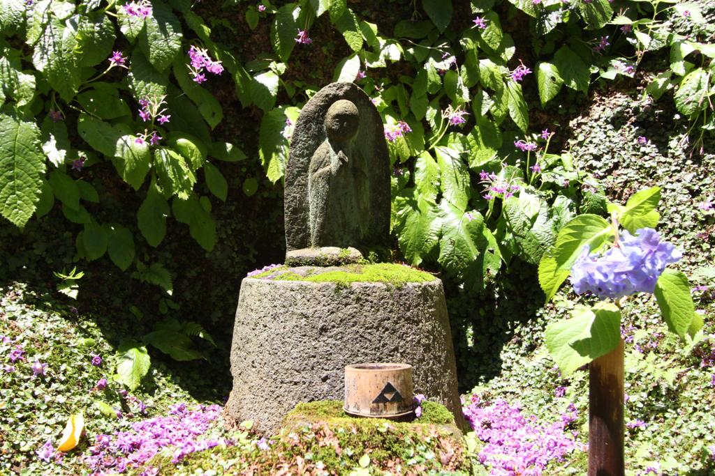 Kita Kamakura Hydrangea spot (28)