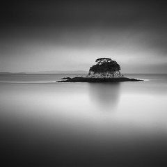 L O S T (maxxsmart) Tags: california longexposure summer blackandwhite bw seascape tree 6x6 film water analog sunrise mediumformat island iso100 bay kodak july marincounty sanrafael sanpablo 1x1 marinelayer sqaure monchrome hasselblad500cm homedeveloped 2011 bayscape chinacampstatepark kodak100tmax epsonv700 nd110 carlzeiss80mmf28 150seconds 10stopndfilter hc110dilutionh ratrockisland nlwirth maxxsmart lee9hardedgendgrad choppinitup f16leebigstopper ~superboo~