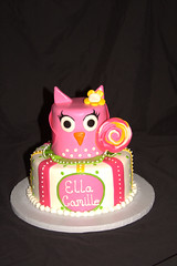 "Owl and lollipop cake small • <a style=""font-size:0.8em;"" href=""http://www.flickr.com/photos/60584691@N02/6023403161/"" target=""_blank"">View on Flickr</a>"