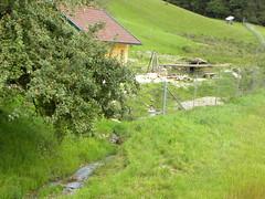August 2011 (sarahamina) Tags: austria sterreich obersterreich autriche winkl innviertel sarahamina