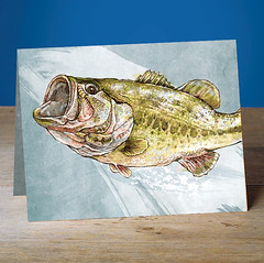 Large Mouth Bass (snailspacepaper) Tags: environment wildlifecards naturecards recycledcards fishingcard