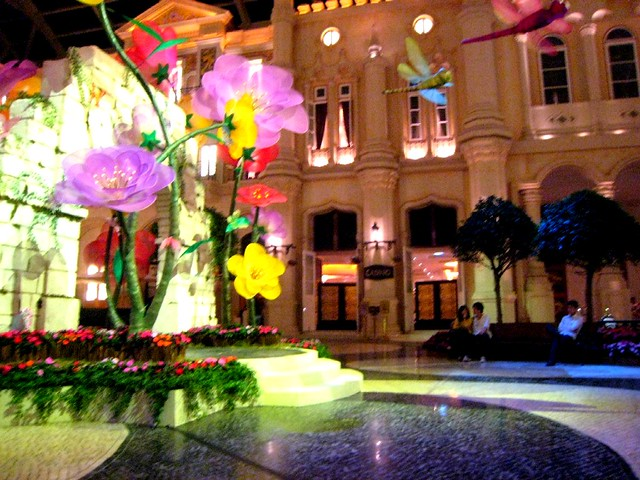 Macau Night Day 3 (11)