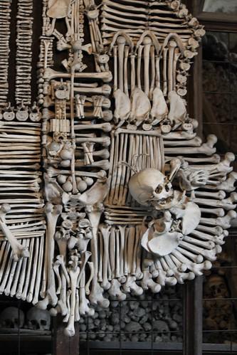 Bone Shield, Kostnice Sedlec
