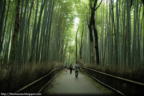 Arashiyama 嵐山 - Bamboo Groves