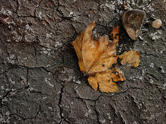 Dry Spell (pinkypinn1) Tags: mud decay cracked
