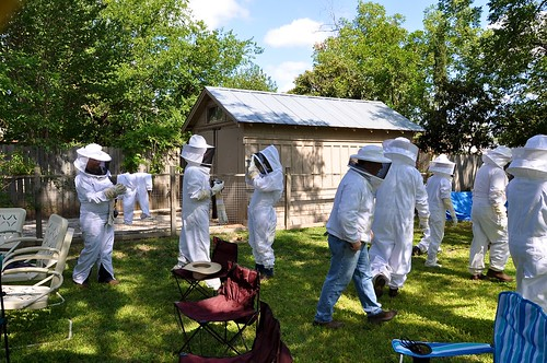 Donning of bee suits