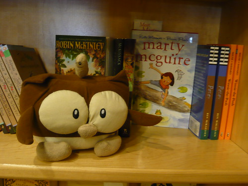 Owly Hangs Out with Marty McGuire at Indigo Bridge Books