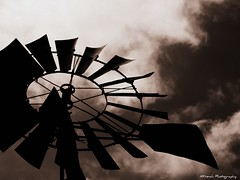 The older you get the stronger the wind gets - and it's always in your face.  ~Pablo Picasso~ (KFrench Photography) Tags: sky blackandwhite bw windmill skyscape wind strawberryfarm gizdichranch watsonvilleca broading