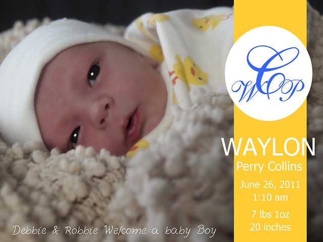 Announcement 11-07-01 Baby Waylon-16a