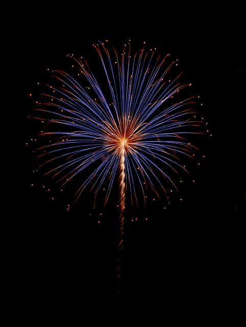 Blue Red Burst firework