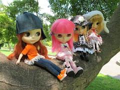 Deblaa, Desdemona, Alice e Valentina
