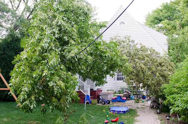 Storm Damage July 2011-13