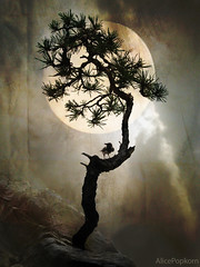 Weltenbaum (AlicePopkorn) Tags: moon white black tree night order symbol competition fullmoon mystical raven mythology cosmic nevermore worldtree alicepopkorn weltenbaum magicunicornverybest artuniinternational