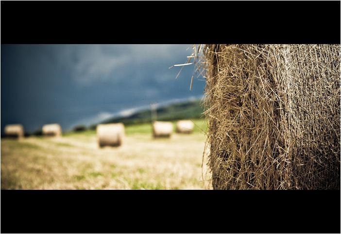IMAGE: http://farm7.static.flickr.com/6143/5951719552_6ffa07902f_b.jpg