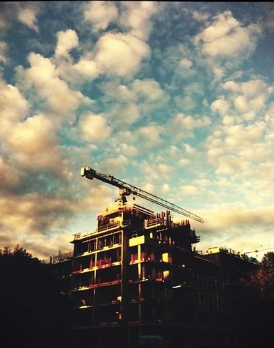 Camera Phone: Crane