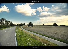 Travels (Andy Brandl (PhotonMix.com)) Tags: travel flowers summer nature clouds germany landscape outdoors tranquility bluesky roadtrip harmony serenity fields roads hdr photonmix andybrandl