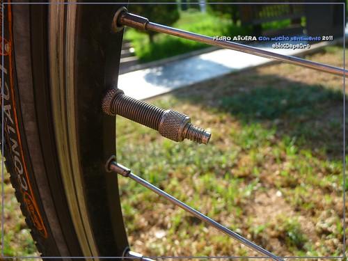 Bicicletas listas para hacer el Camino 5991523253_c3bbeb9538