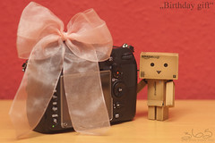 Birthday gift (Oliver Totzke) Tags: birthday toy nikon d2x 85mm days gift 365 nikkor f18 danbo revoltech danboard
