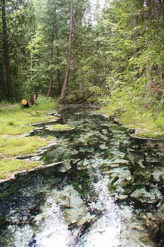 Sulphur spring Saugeen River Conservation Area Hanover Ontario