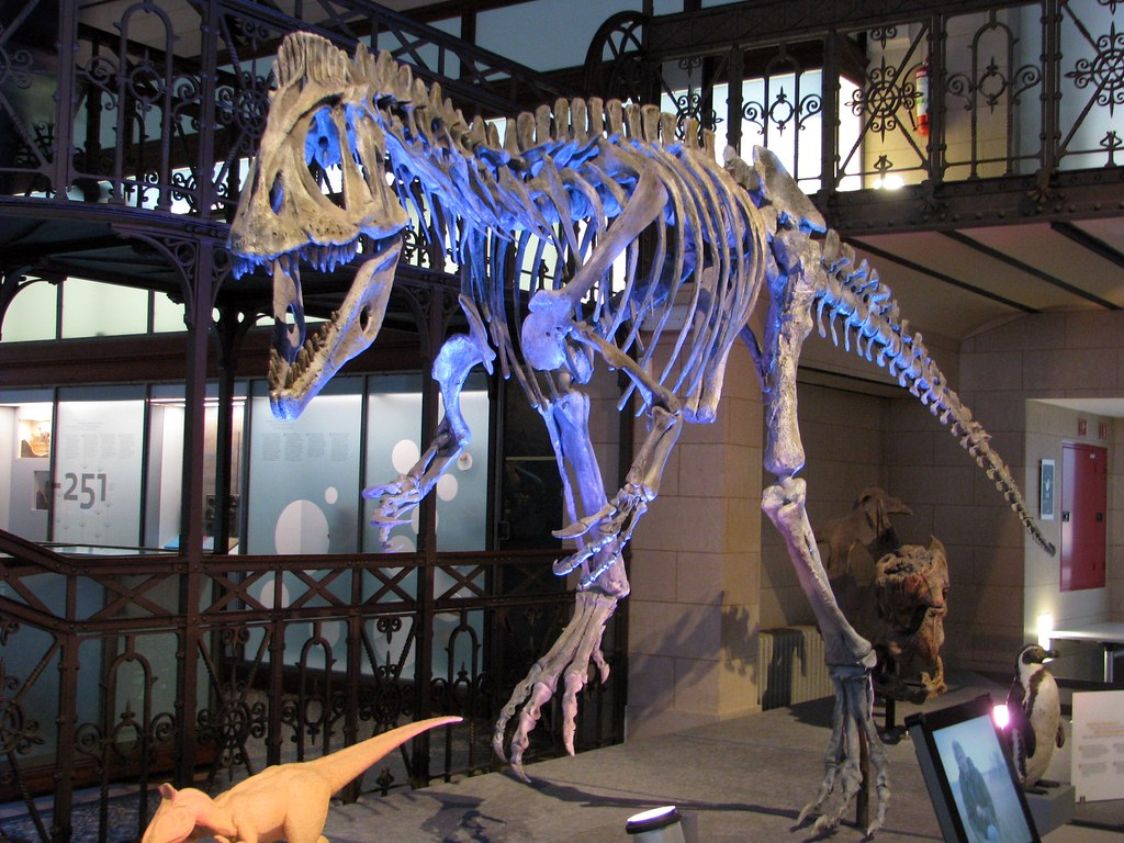 the worlds best photos of cryolophosaurus flickr hive mind