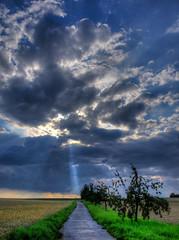 the way to the beam (olipennell) Tags: cloud tree nature field germany way landscape feld wolke landschaft sunbeam baum sonnenstrahl weg badenwr