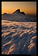 Shaped By The Elements (AlpineEdge) Tags: camping winter light sunset snow canada mountains cold ice nature landscape whistler pattern skiing bc hiking snowy windy backpacking summit snowshoeing chilly recreation blacktusk tenting windblown mtns ontop garibaldilake panoramaridge garibaldiprovincialpark thetusk outdoorrec theblacktusk