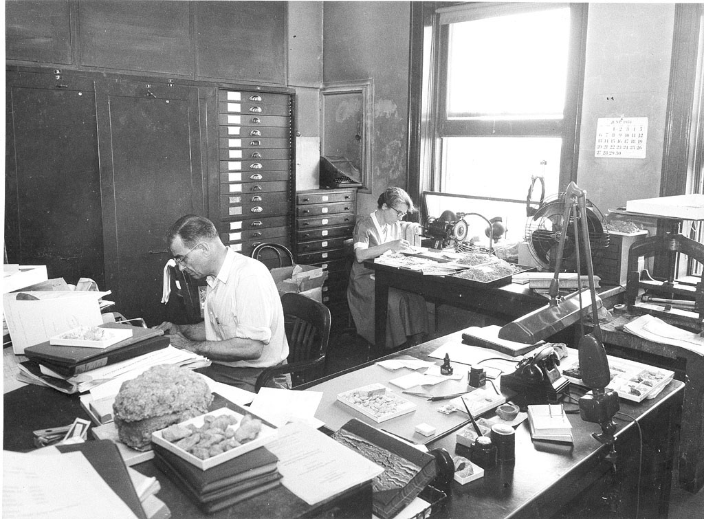 Coopers in Paleontology Lab, 1954