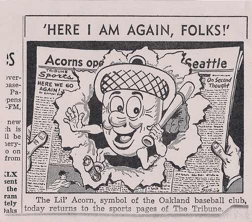 A classic Oakland Tribune sports page cartoon by Lee Susman (until recently an El Cerrito resident) announces the return of baseball and the Lil Acorn mascot.