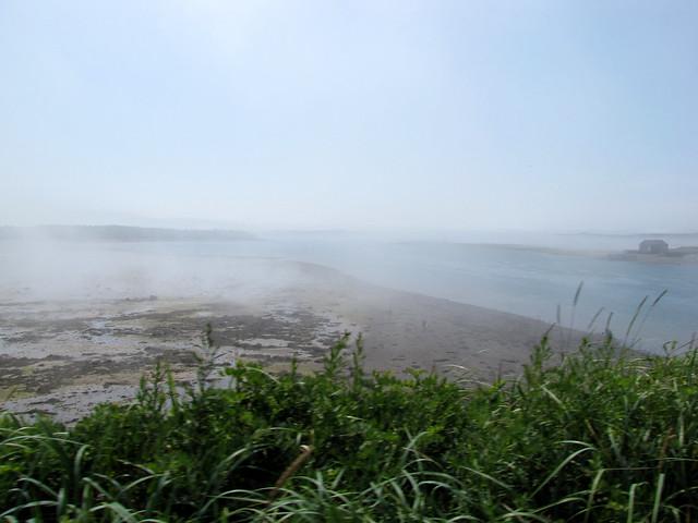 Crossing mist-2
