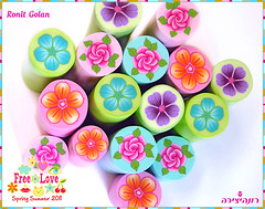 Flower girl - Millefiori canes collection (Ronit golan) Tags: flowers summer girl cane israel spring little polymerclay fimo clay haifa ronit golan polymer millefiori premo 2011 millefiore ceramicaplastica canework ronitgolan millefiorecane millefioricane