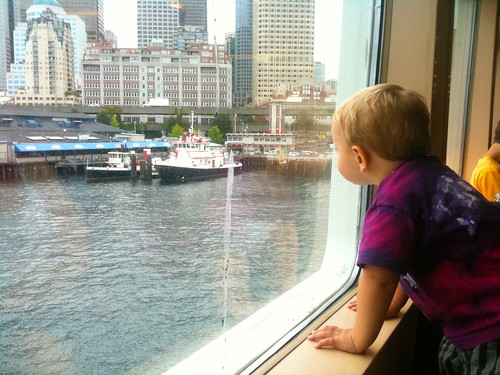 Tavi on the ferry
