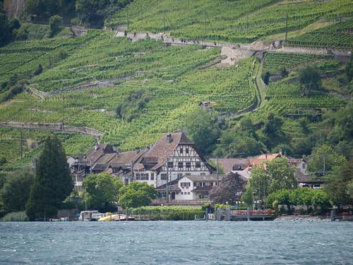 Concure Fribourg Région Morat Trois Lacs 6.jpg